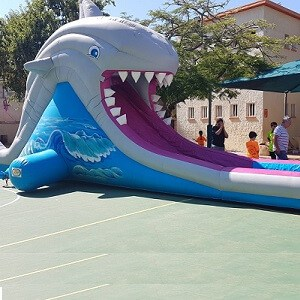 מתקני מים מתנפחים בצורת כריש